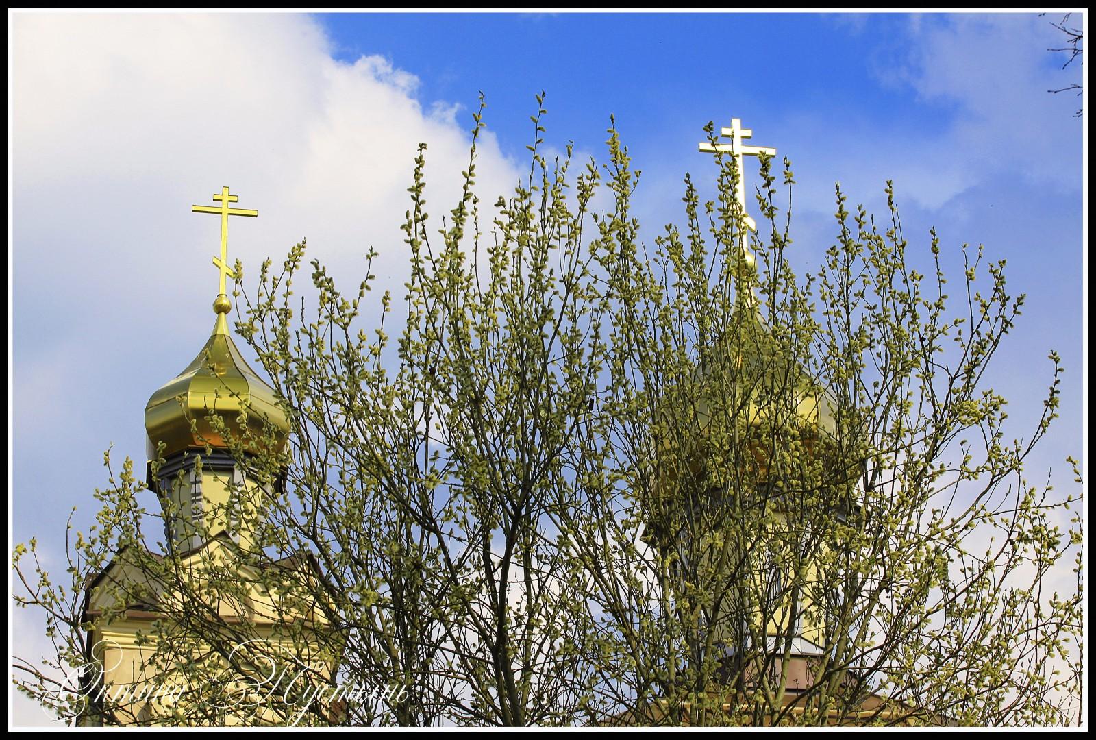 Купола Храма в честь свт. Льва Катанского и прп. Иоанна Рыльского