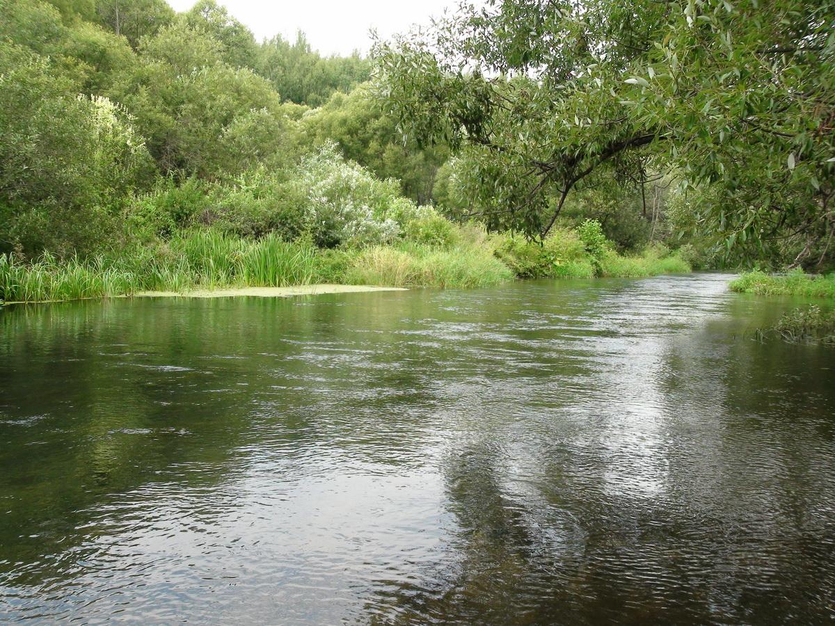 Речка Серена рядом с источником
