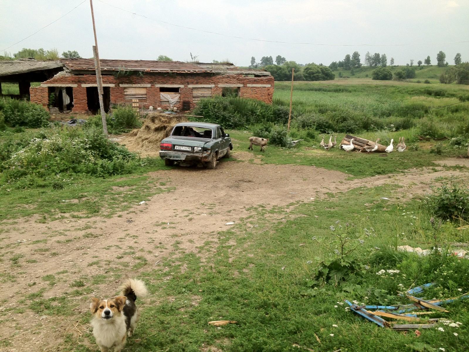 Снова о грустном: русское ранчо
