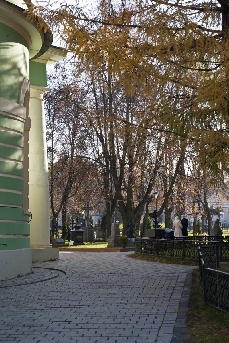 Введенский собор и Оптинский некрополь...