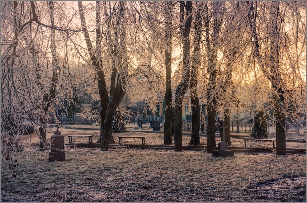 Утренняя сказка (снимок сделан 27 ноября 2014 г.)