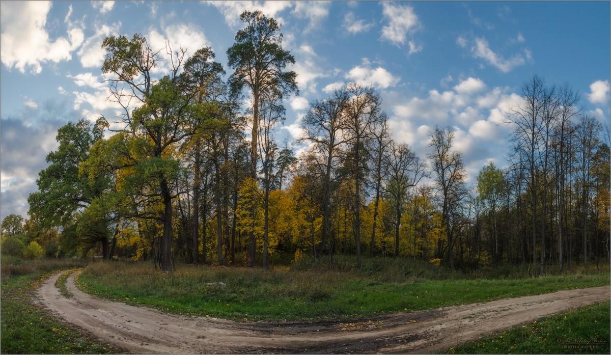 Поворот на осень (снимок сделан 1 октября 2014 г.)