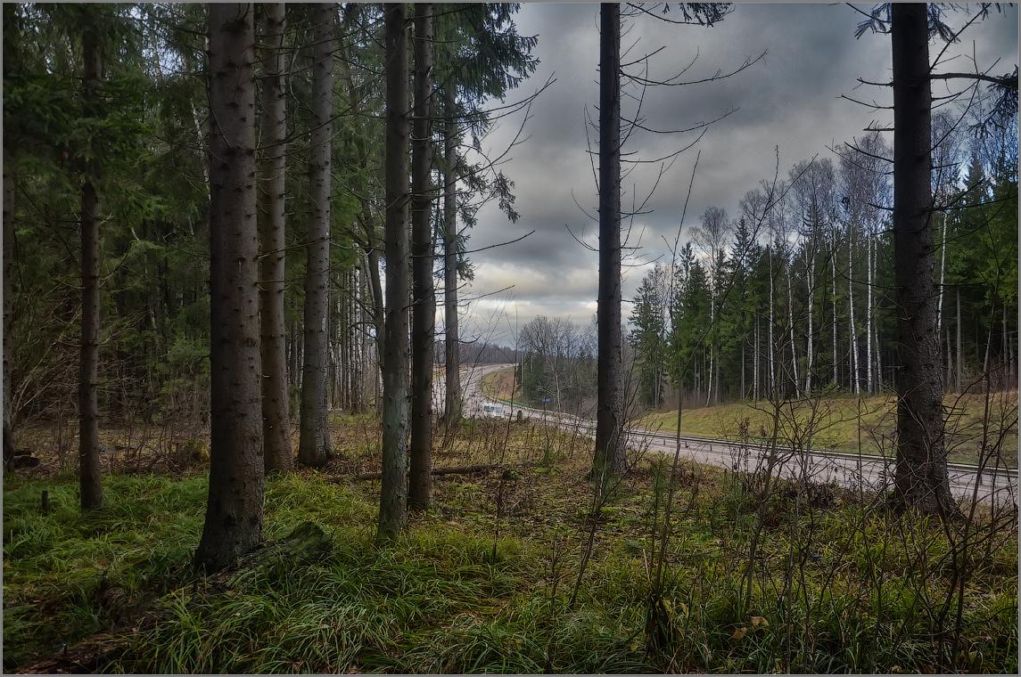 Трасса разделяющая лес (снимок сделан 10 ноября 2012 г.)