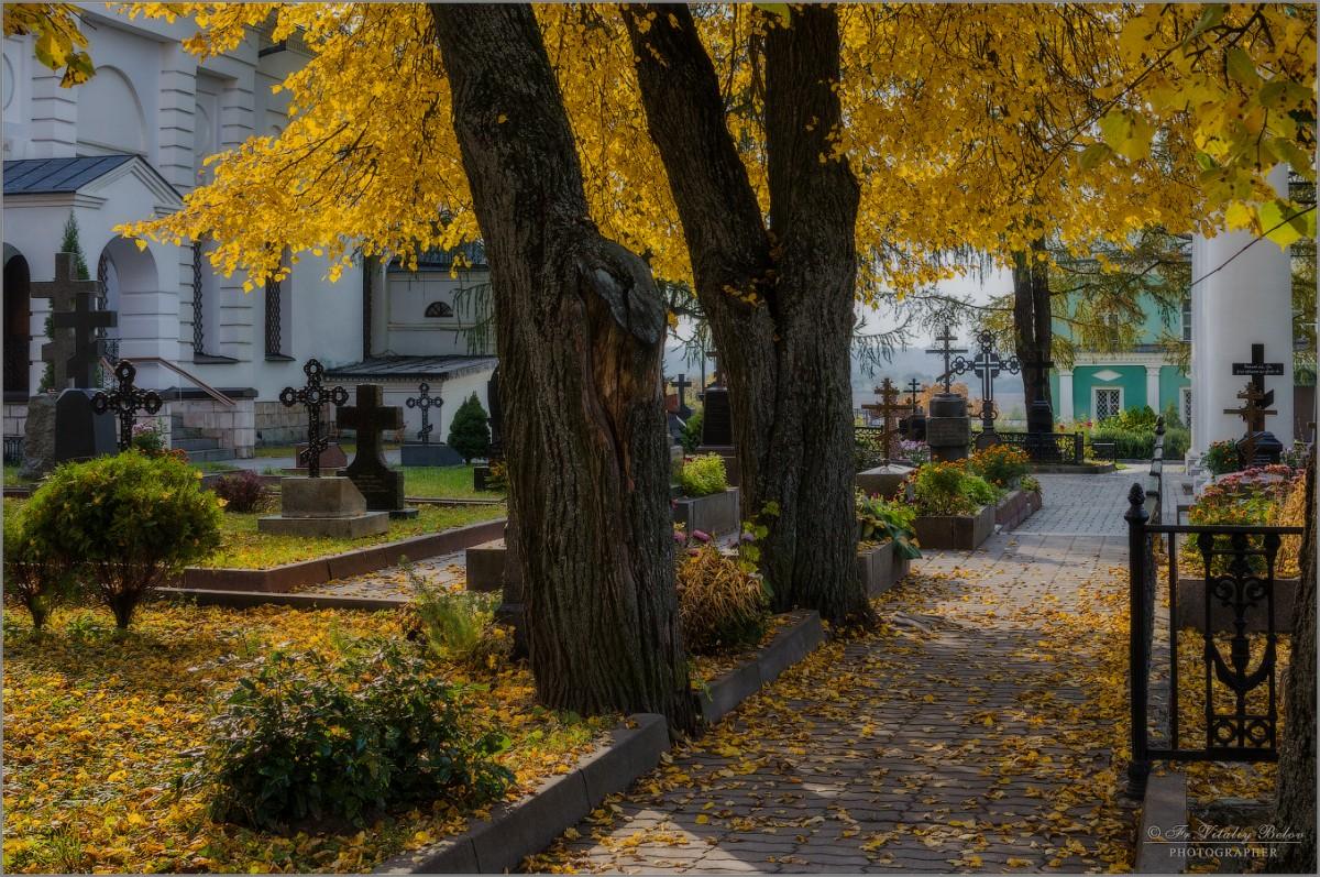 Золото осени (снимок сделан 3 октября 2016 г.)