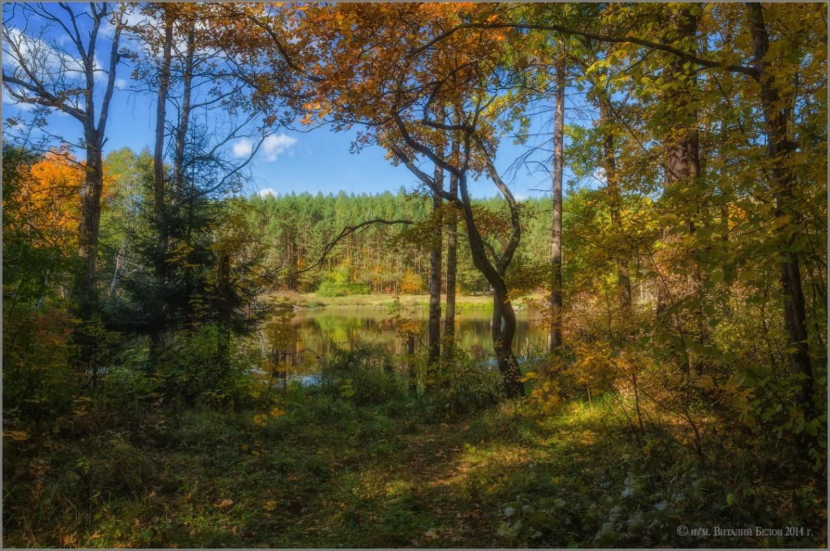 Осеннее окно (снимок сделан 28 сентября 2014 г.)