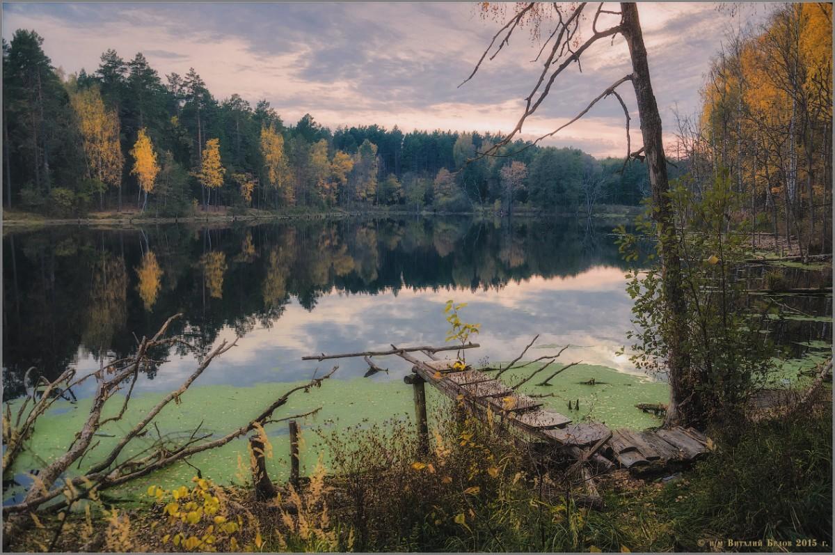 Осенний покой (снимок сделан 18 октября 2015 г.)
