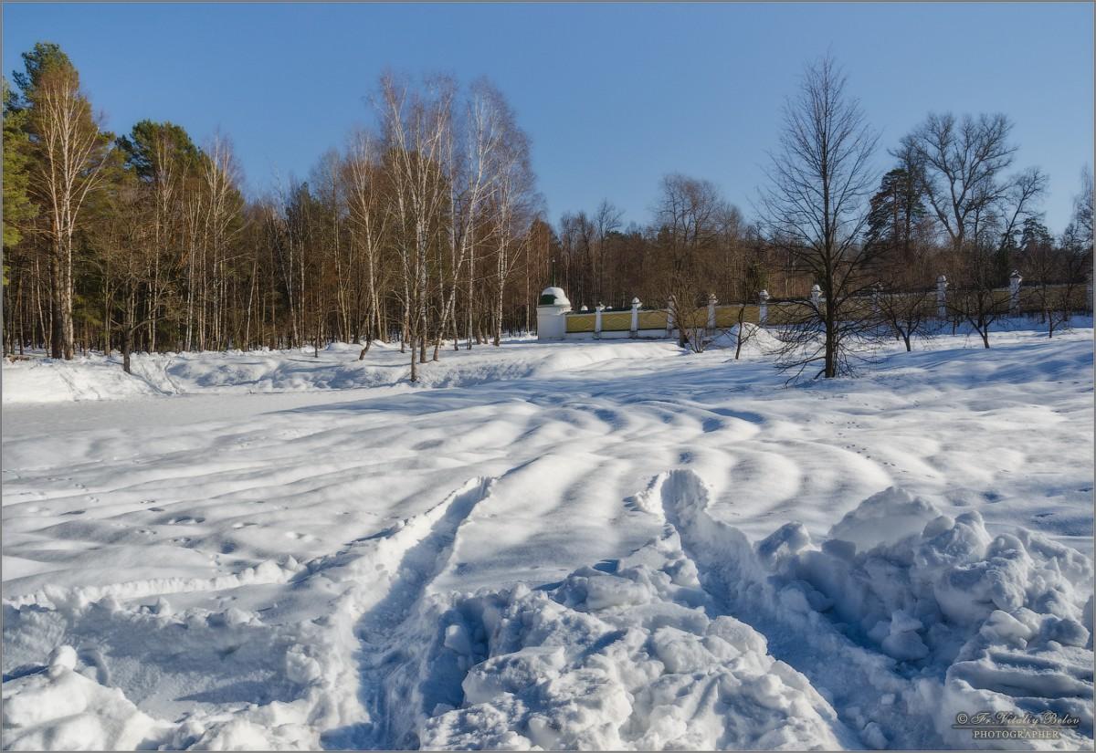Снежный февраль (снимок сделан 23 февраля 2013 г.)