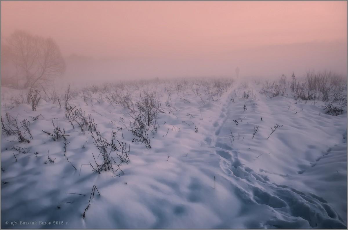 Растворяясь в зимнем тумане (снимок сделан 9 февраля 2012 г.)