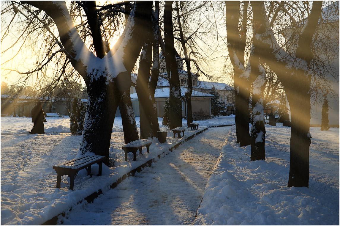В теплых лучах ( 9 декабря 2012 г.)