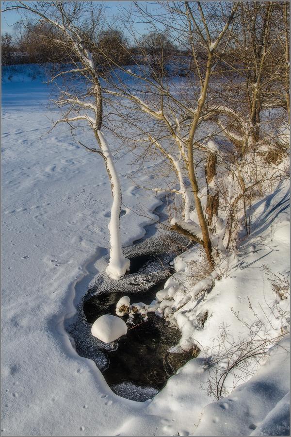Побережье скрытой подо льдом реки (снимок сделан 24 января 2016 г.)