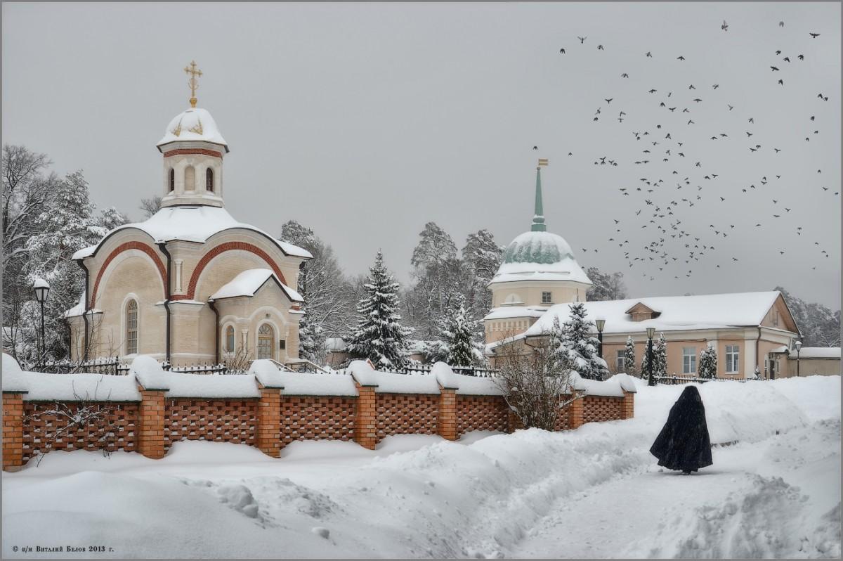 Монах и птицы (снимок сделан 18 января 2013 г.)