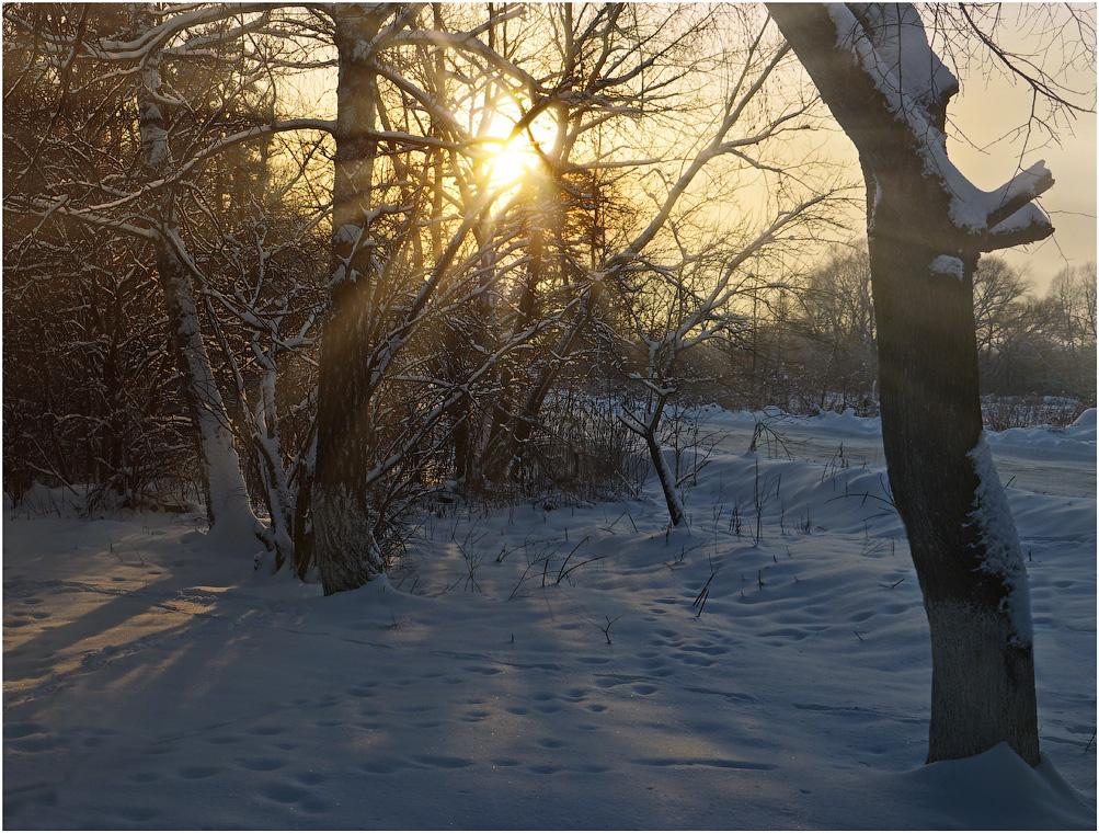 Пронзающие лучи зимнего солнца ( 9 декабря 2012 г.)