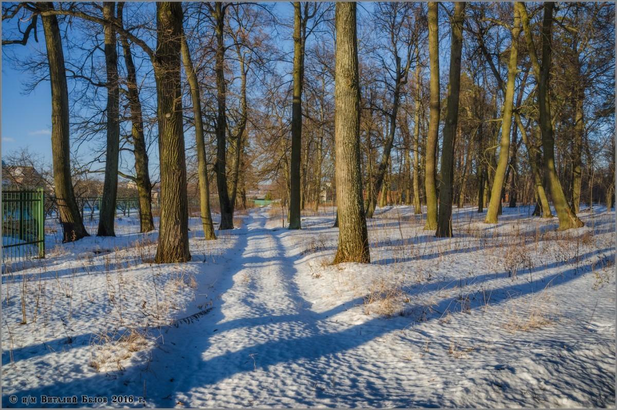 Зимняя дорога_2 (снимок сделан 29 января 2016 г.)