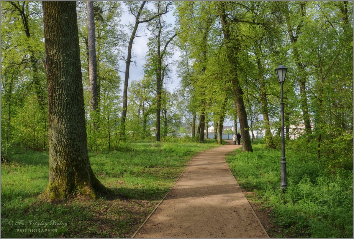 Весенними дорожками (снимок сделан 6 мая 2012 г.)