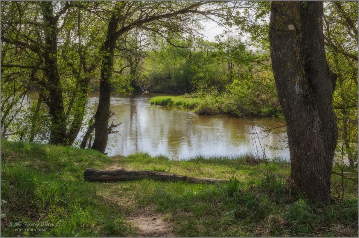 На берегу реки Жиздры (снимок сделан 7 мая 2017 г.)