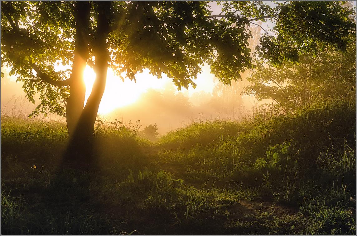 Утро нового дня ( Снимок сделан 21 мая 2014 г.)