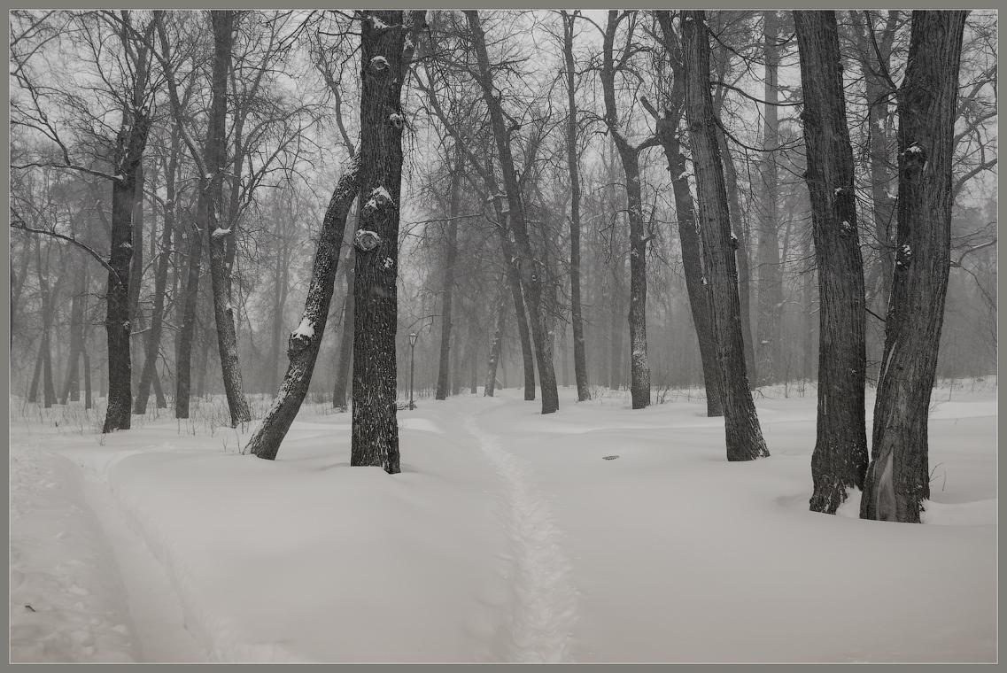 Возвращение зимы ( 24 марта 2013 г.)