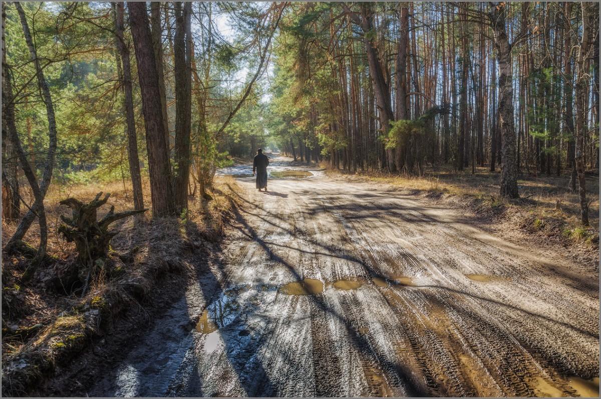 Весенними дорогами (снимок сделан 15 марта 2015 г.)