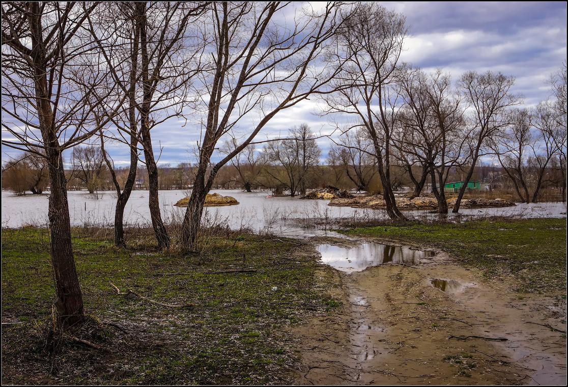 Дорога в разлив ( снимок сделан 21 апреля 2013 г.)