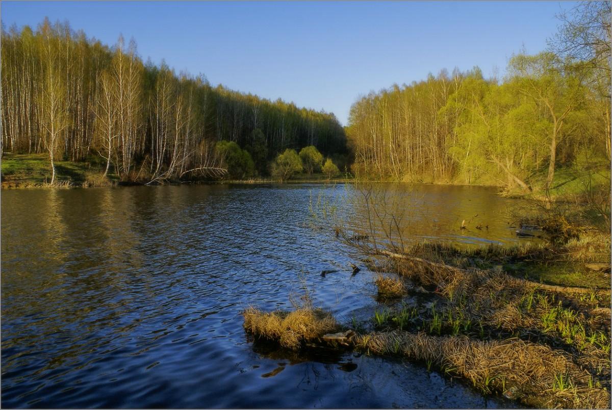 Весна на озере (снимок сделан 6 мая 2011 г.)