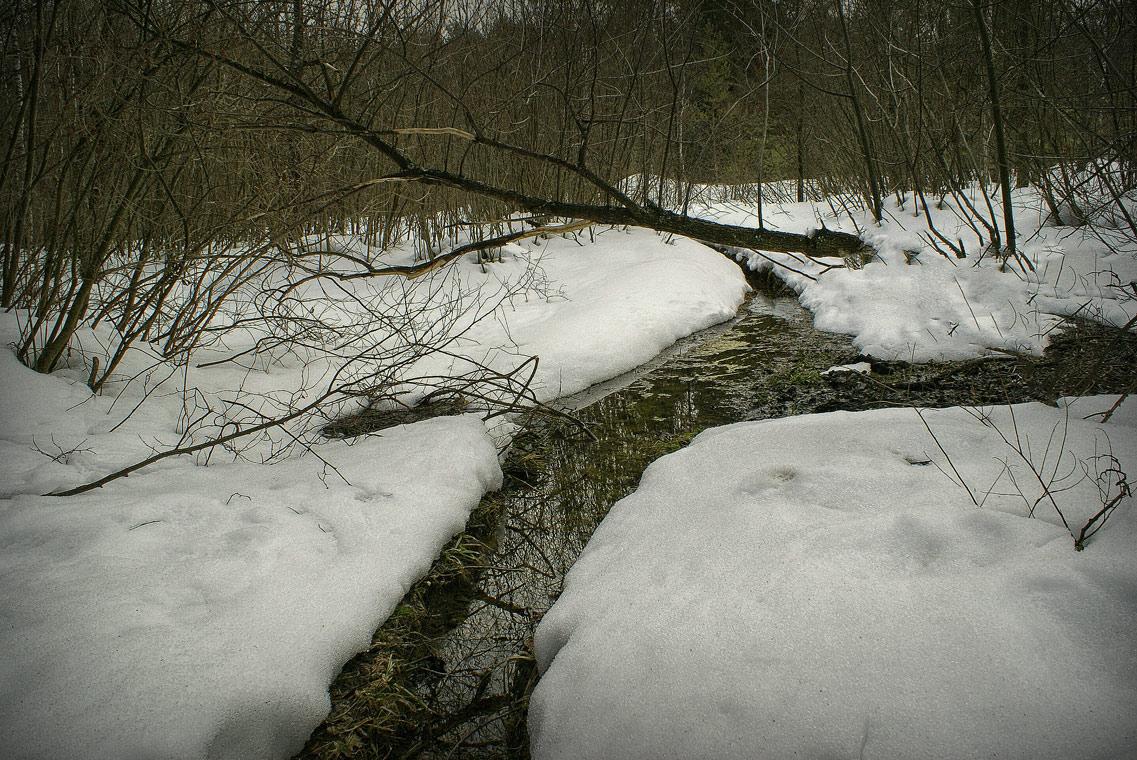 И весной бывает тишина ( 21 марта 2011 г. )