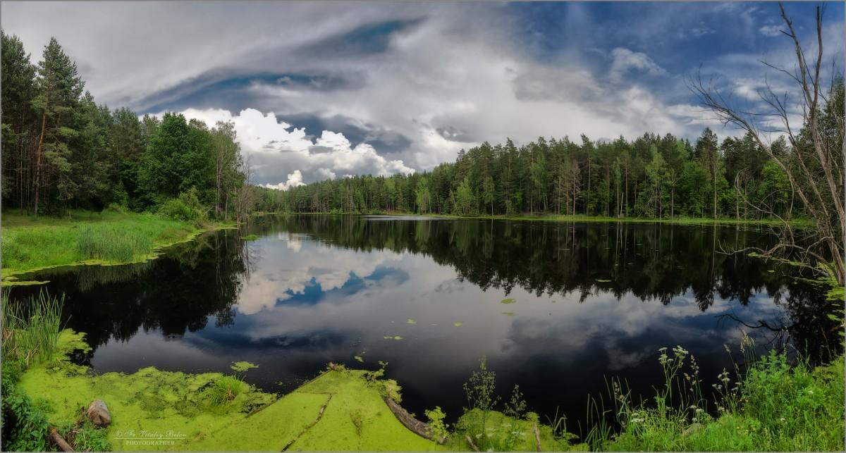 Тишина на лесном озере (снимок сделан 16 июня 2016 г.)
