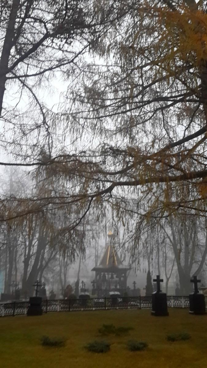 Туман перед дождём (9 ноября 2014г.)
