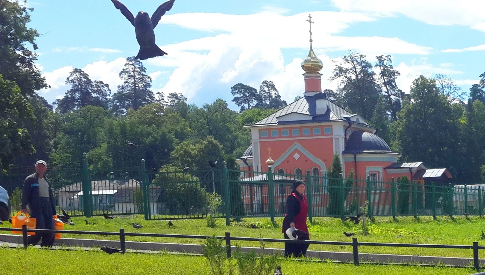 Голубь в небе и голубь на небе :)