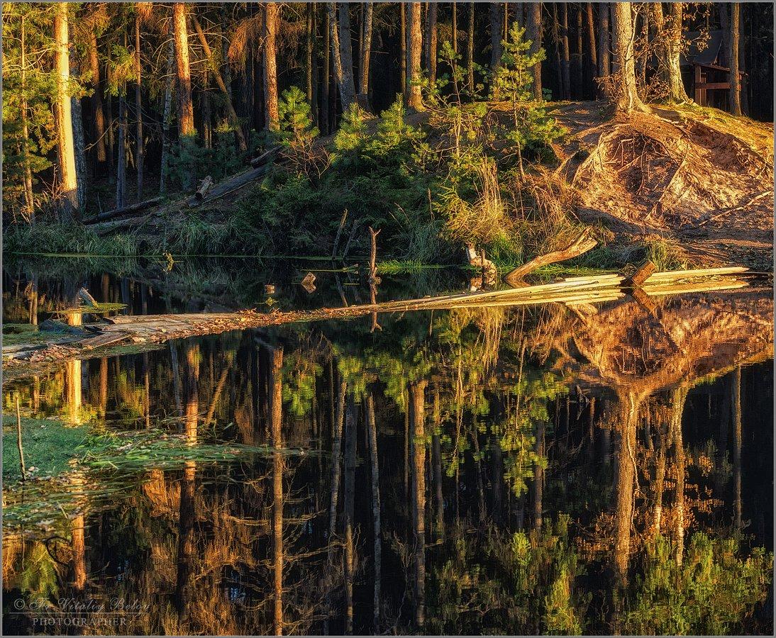 Лесное зеркало (снимок сделан 14 октября 2013 г.)