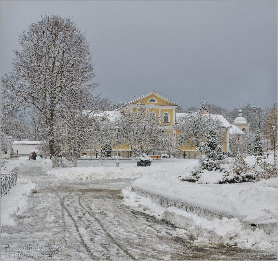 Теплый январь (снимок сделан 3 января 2017 г.)