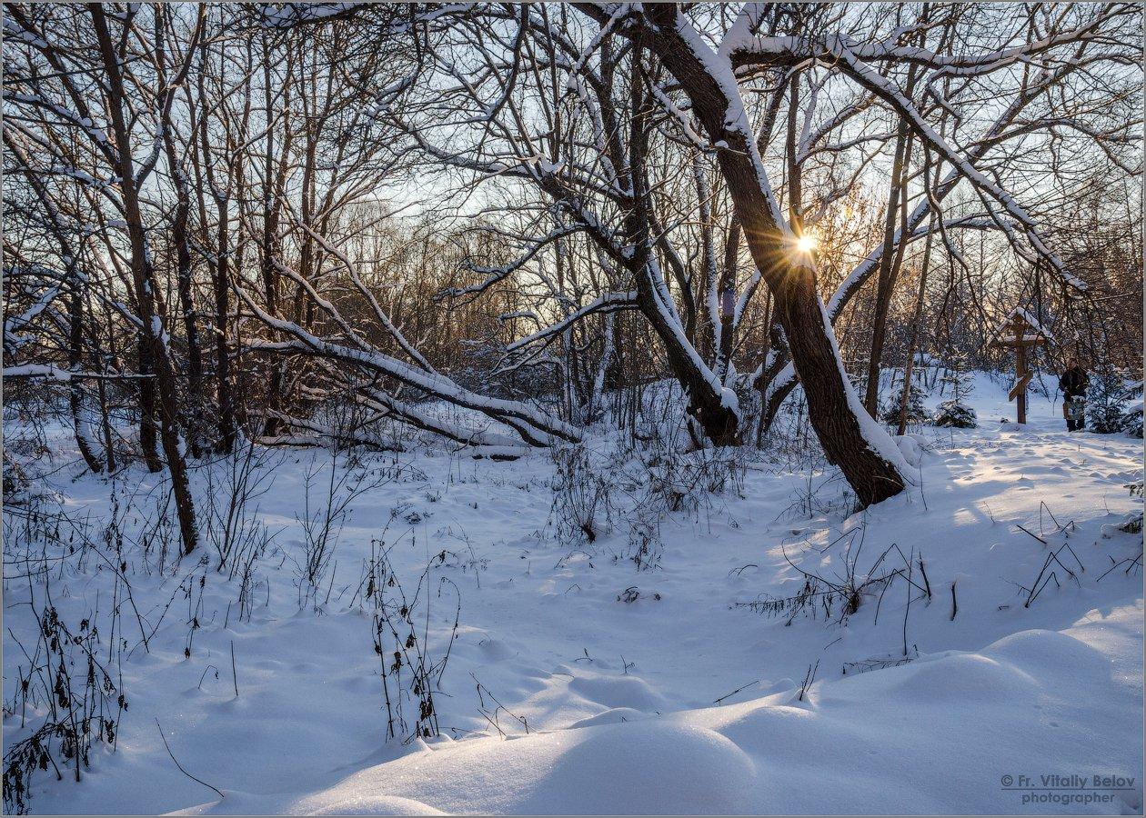 2730_Один из зимних солнечных дней.jpg