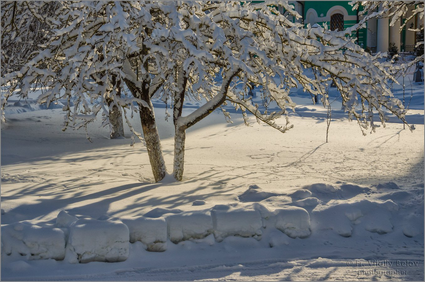 Зимний наряд (снимок сделан 5 февраля 2018 г.)