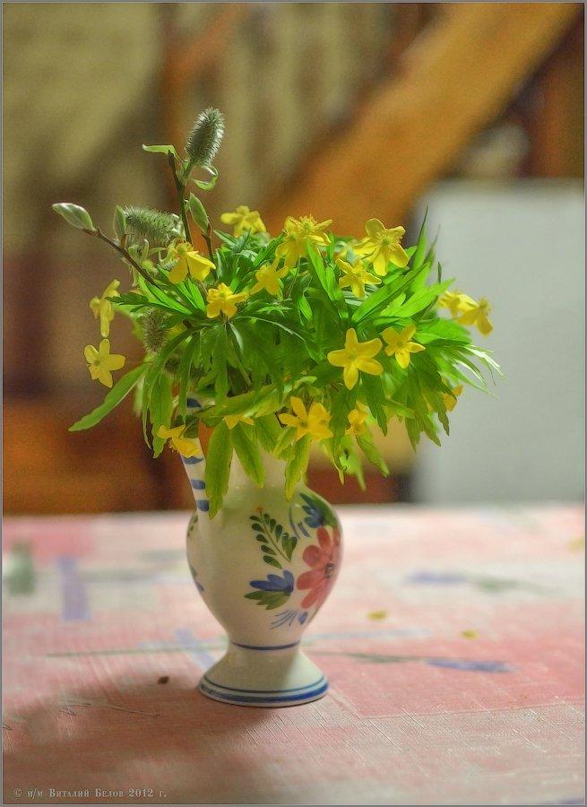 Весенний букет (снимок сделан 26 апреля 2012 г.)