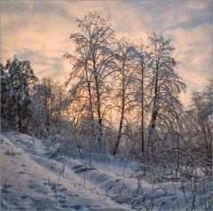 Зимний розовый закат (снимок сделан 5 февраля 2018 г.)