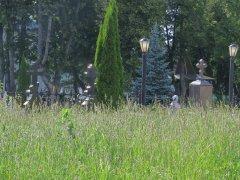 На оптинском кладбище