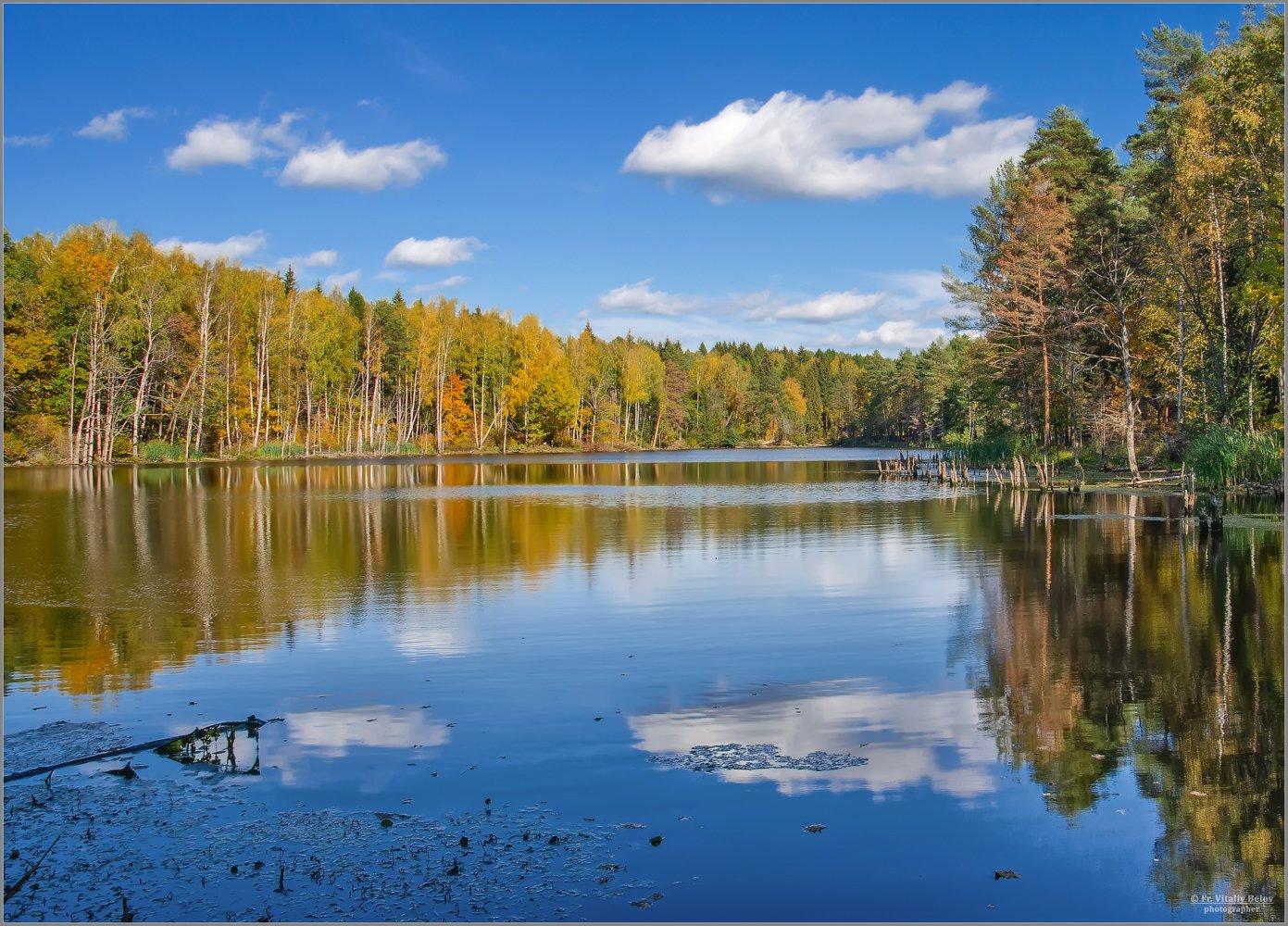 Осенние краски (снимок сделан 28 сентября 2014 г.)