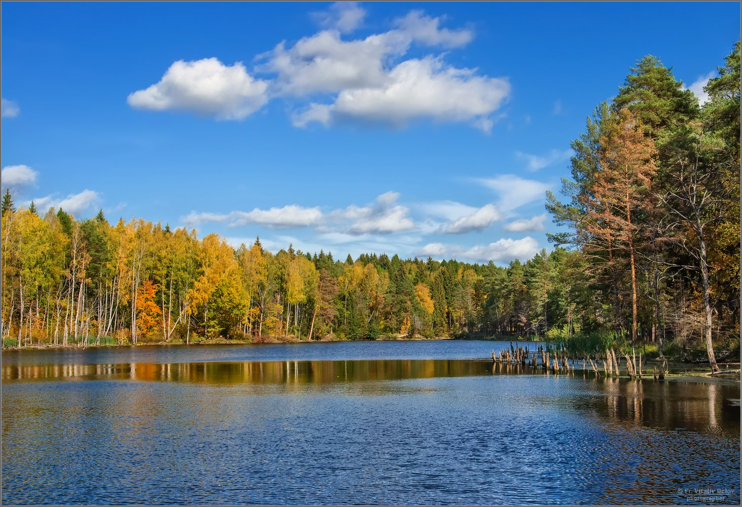 Золотом покрытые леса (снимок сделан 28 сентября 2014 г.)