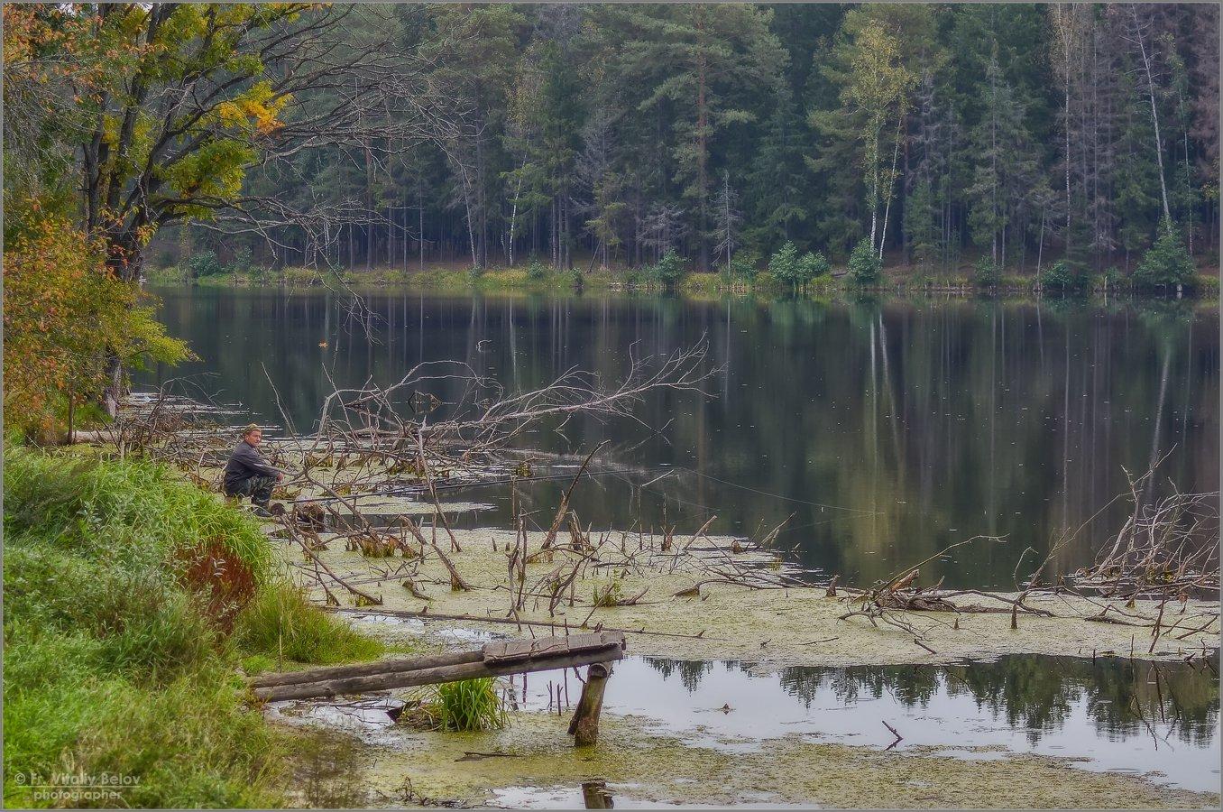 Одинокий рыбак (снимок сделан 15 сентября 2012 г.)