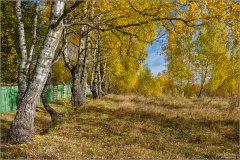 Осенний ноктюрн (снимок сделан 14 октября 2018 г.)
