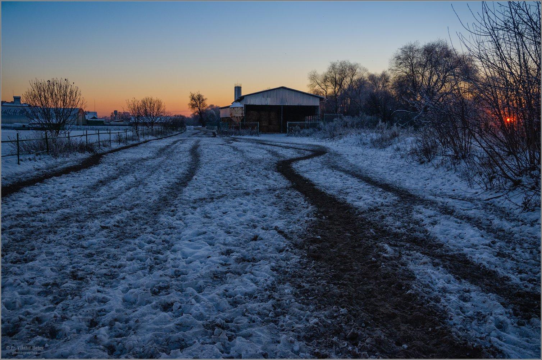 В вечерних сумерках истоптанный изрядно снег (снимок сделан 30 ноября 2018 г.)