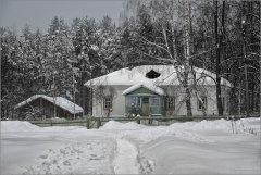 3151_Снежная зима_2.jpg