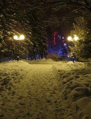 Козельский парк