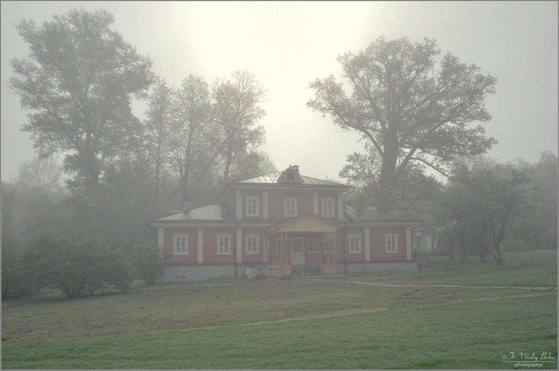 В легкой дымке тумана