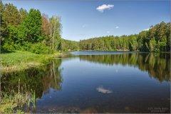 3284_Весенняя тишина лесного озера.jpg