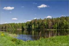 Весенняя тишина лесного озера_2