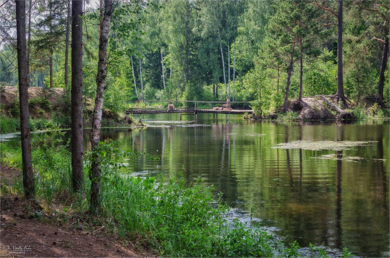 3440_Летом на озере.jpg