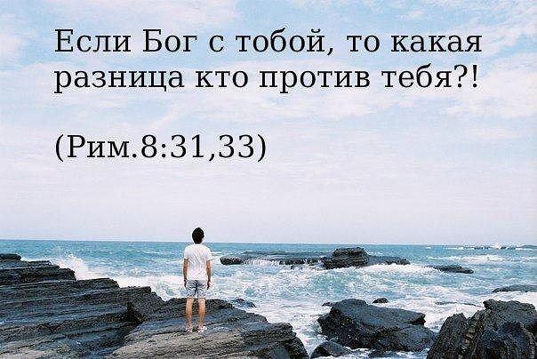 26991458_47911ba7c4f3aad0cdf3c5111f75b90c_800.jpg