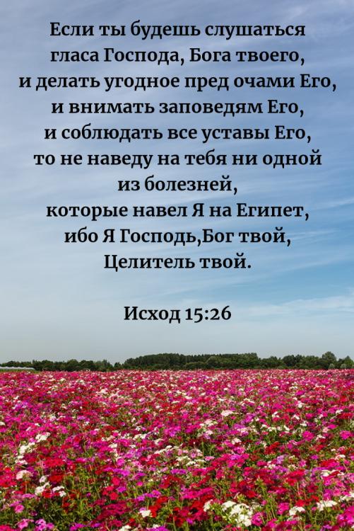 15 гл Если ты будешь слушаться гласа Господа Бога твоего.png
