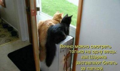 post-634-0-29304500-1414515649_thumb.jpg