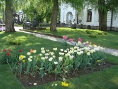 Оптинская весна 2014